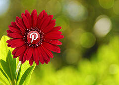 pretty_pinterest